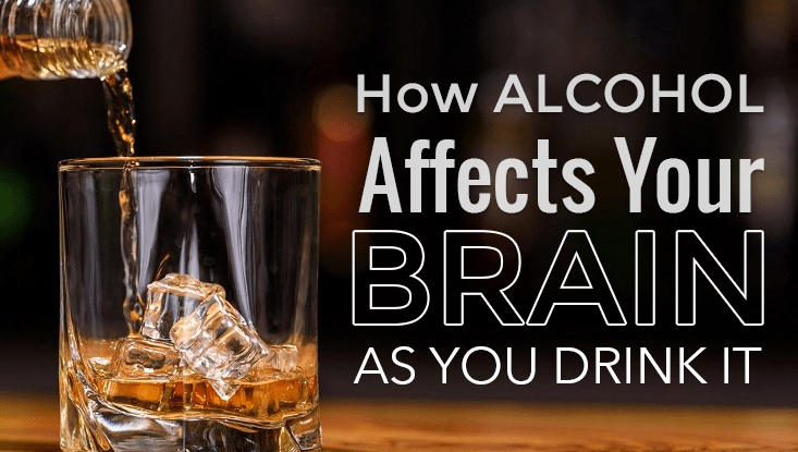 Alcohol Effects on Brain